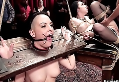 Submissive babes tormented and anally banged
